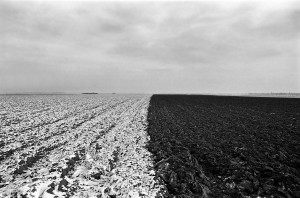 Agrarlandschaft02