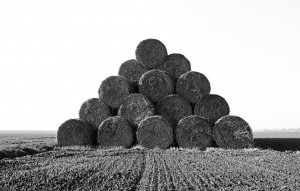 Agrarskulptur06