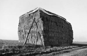 Agrarskulptur10