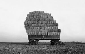 Agrarskulptur13