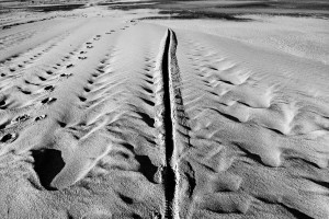 13-Sand