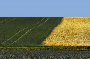 Agrarlandschaft17