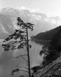11-Norwegen