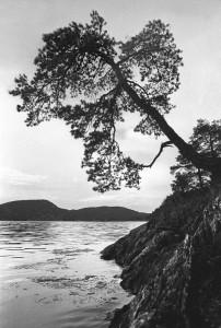 14-Norwegen