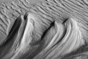 15-Sand